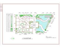 小广场绿化配置平面图