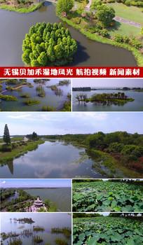 无锡贝加禾湿地风光航拍视频