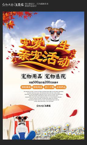 创意宠物海报