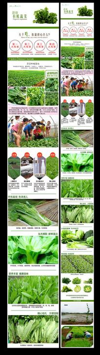 绿色蔬菜宝贝详情