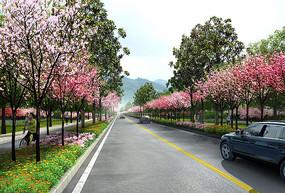 道路两侧植物景观