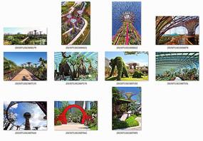 新加坡海湾花园景观设计