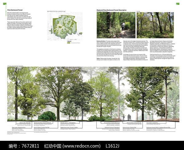 公园生态景观分析图图片