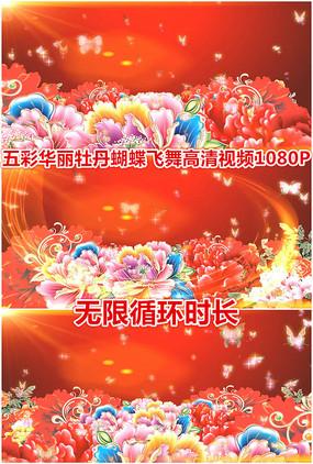 富贵牡丹花朵五彩蝴蝶飞舞循环视频
