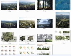 国外景观设计分析图排版