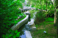 小区小溪水景意向图