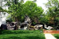 园林太湖石装饰景观