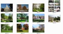 哈佛大学校园景观 JPG