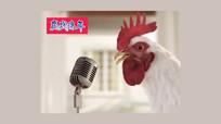 鸡年搞笑微信小视频