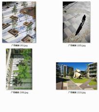 特色造型铺装景观 JPG