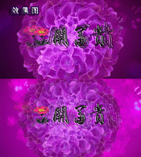 花开富贵花朵大绣球花环高清视频