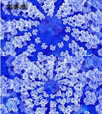 唯美青花瓷牡丹放花花朵高清视频