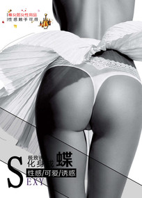 棒女郎时尚内衣海报