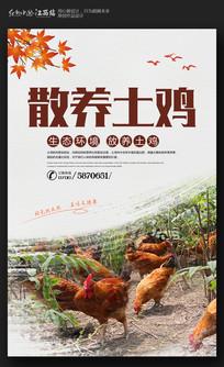 简约散养土鸡宣传海报