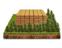 天然实木木板木材psd素材