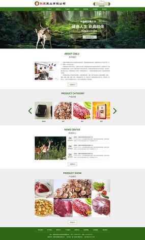 美容养生网页整套PSD模板