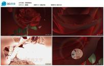 AECS6玫瑰爱情婚礼展示视频模板