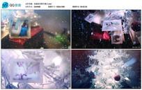 小清新圣诞快乐照片展示视频
