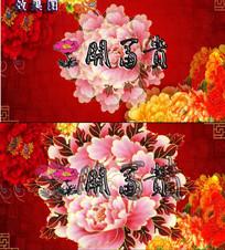 唯美花开富贵牡丹绚丽花环视频