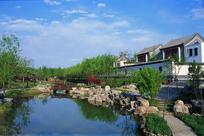 新中式风格自然水景意向图