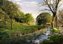 公园溪水植物景观jpg