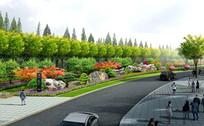绿地植物造景jpg