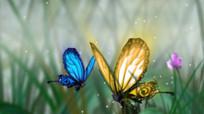 穿越千年中国风蝴蝶山水画视频
