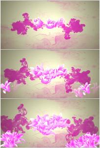 水墨画晕开粉红色百合花朵绽放开放视频