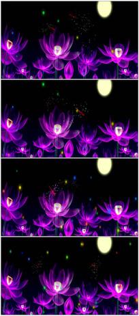 超炫荷花莲花3D全息投影LED背景视频