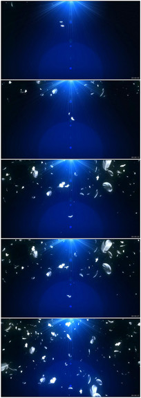 梦幻天使的翅膀羽毛飞舞LED视频