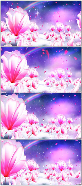 紫色花瓣蝴蝶LED舞台背景视频 mov