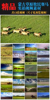 蒙古草原牛羊实拍视频素材