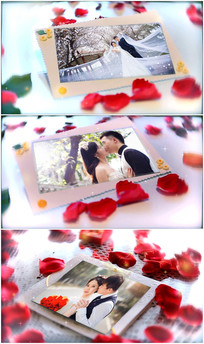 会声会影x6婚庆情人节玫瑰模板