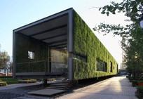 集装箱构筑物墙面绿化 JPG