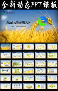 农村合作银行浙江农信2017年ppt