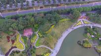 湿地公园湖畔航拍高清视频