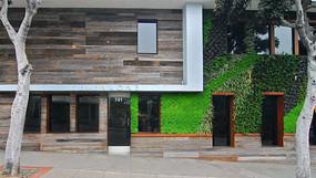 建筑墙面植物绿化