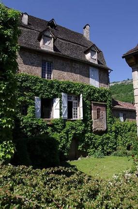 老房子垂直绿化