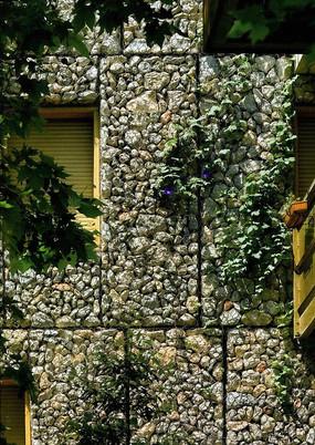 石笼墙壁垂直绿化