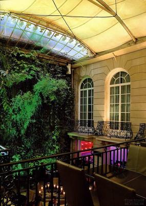 室内庭院绿化墙