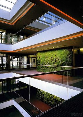 室内走廊植物墙