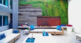 庭院植物墙壁景观