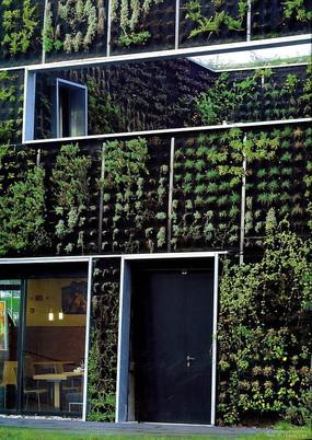 休闲餐厅建筑垂直绿化