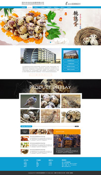 简约企业网站模板设计 PSD