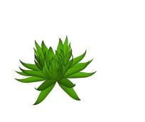 莲形绿色植物SU
