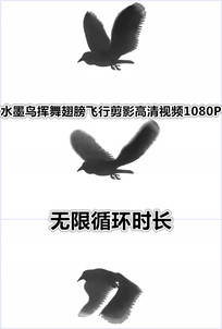 水墨老鹰小鸟挥舞翅膀飞翔视频