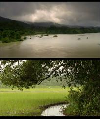 下雨过后视频素材 mp4