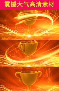 2017年 企业年会金色颁奖奖励奖杯