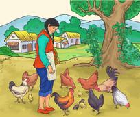 农妇喂鸡插画