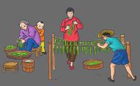 晒野菜插画